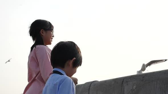 Asian Children Feeding The Seagulls On The Bridge