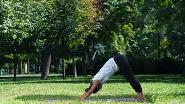 Thumbnail for Young Woman Doing Yoga Pose on Park