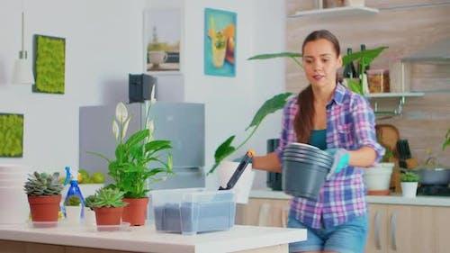 Bringing Flowerpots on Work Table