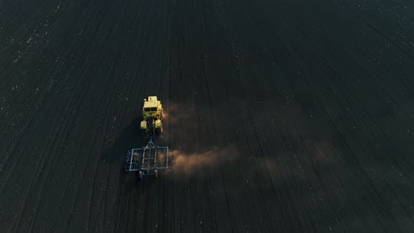 Tractor in the Large Brown Field Prepares the Soil for Sowing