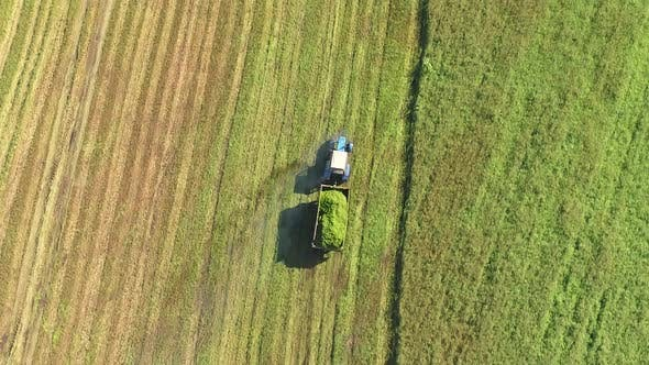 A Tractor with a Trailer Travels Along the Agricultural Field