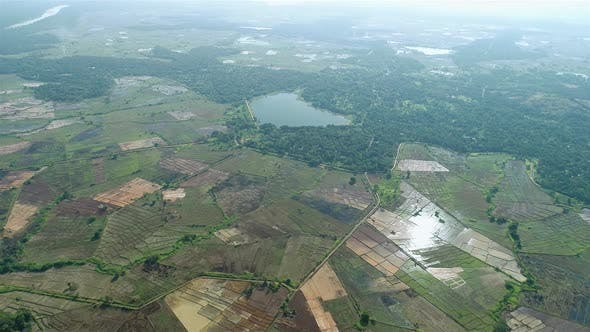 Thumbnail for High Arial Pan Around Paddy Fields