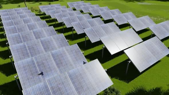 Big Farm Solar Panel on Grass