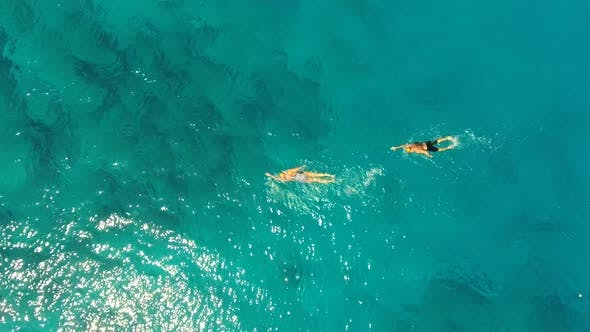 Male and Female Professional Swimmers Swimming in the Clear Blue Sea