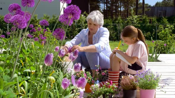 Thumbnail for Grandmother and Girl Study Flowers at Garden