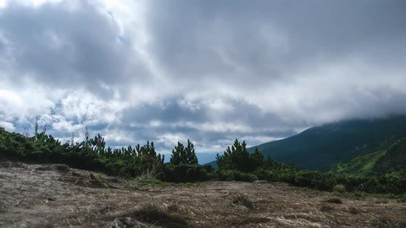 Thumbnail for Timelapse of Moving Low Clouds in the Carpathian Mountains. Cumulus Dramatic Sky