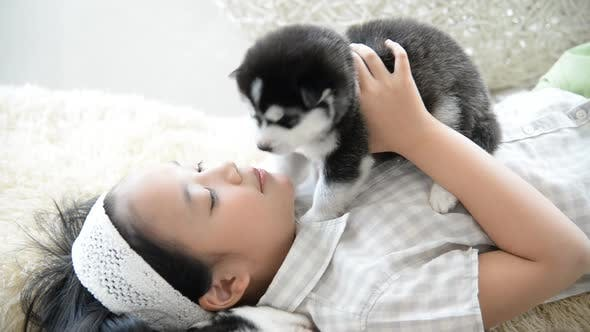 Asian Girl Playing With Siberian Husky Puppy In The Room