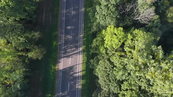 Flying along the road between threes with driving vehicles
