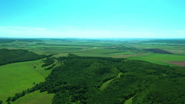 Aerial View, Green Flat Valley with Trees and Plants, Green Dense Forest, Beautiful Natural