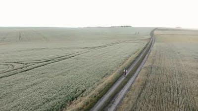Cycling at sunset. Offroad cycling. Gravel cycling