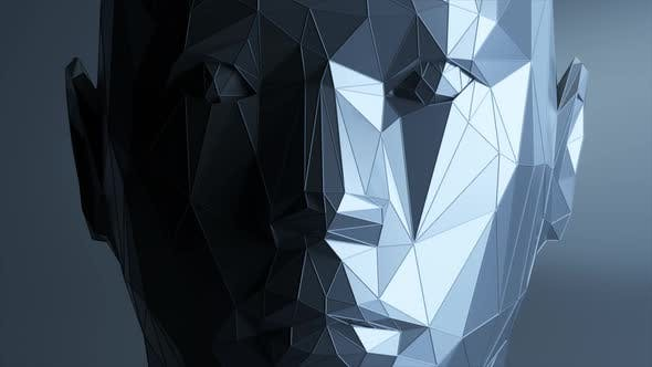 Creates a Polygonal Digital Human Face