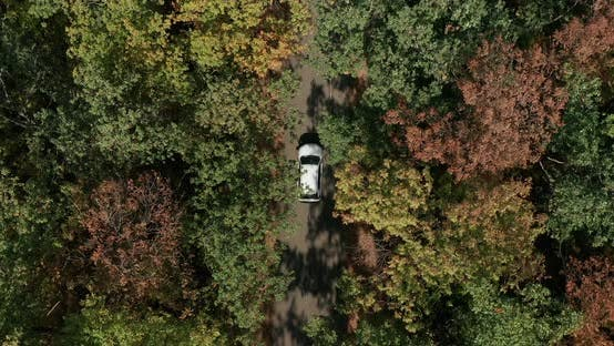 Thumbnail for Aerial Top Down View of White Car Driving on Country Road in Forest in At.