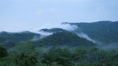 Beautiful foggy of rainforest mountain.