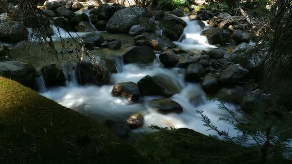 River In Pirin Mountain In Bulgaria