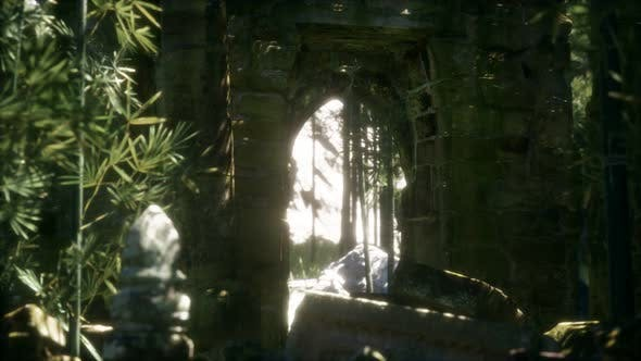 Thumbnail for The Ruins of Ancient Buildings in Green Bamboo Forest