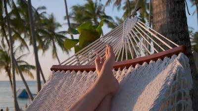 Enjoyable Vacation in Tropics