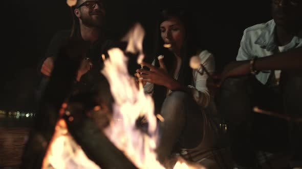Thumbnail for Group of People Relaxing by Campfire