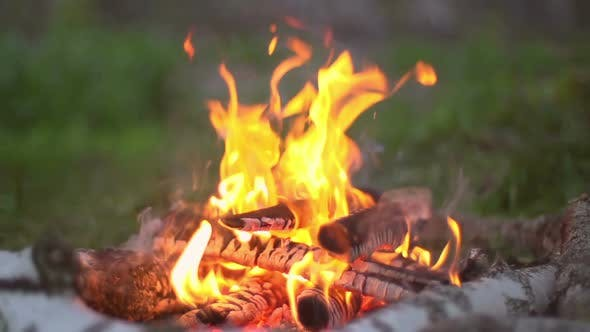 Thumbnail for Burning Campfire