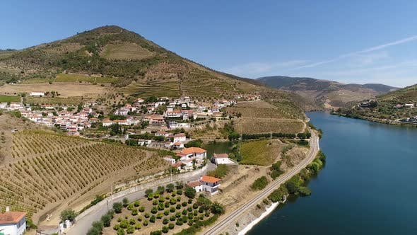 Cover Image for Aerial View of the Terraced Vineyards in Portugal