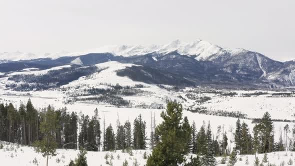 Thumbnail for Tree Aerial Reveal Mountain Peaks Breckenridge Colorado