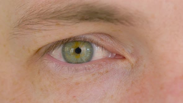 Thumbnail for Close Up of Male Eye with Green Iris 21