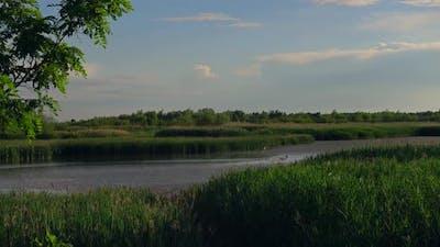 River Landscape In Romania