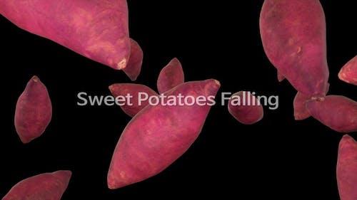 Sweet Potatoes Falling