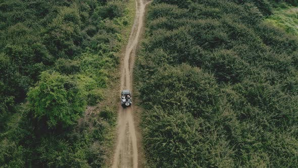 Drone Shot of a Vehicle Almost Enclosed By Lush Green Trees