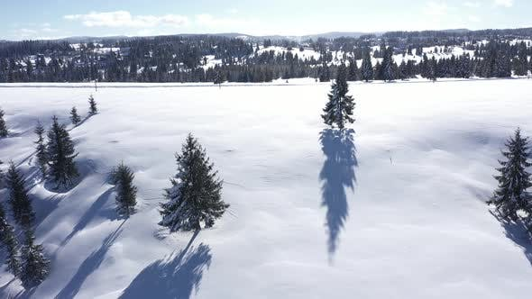 Thumbnail for Winter View of Snowy Landscape