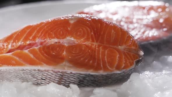 Thumbnail for Fresh Raw Salmon on Ice