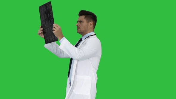 Thumbnail for Healthcare Personnel in White Labcoat Looking at X-Ray