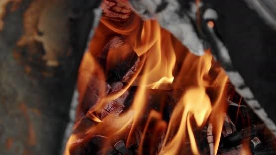 Thumbnail for Bonfire Burning Trees, Close Up Camping Fire, Burning Firewood, Slow Motion. Close Up