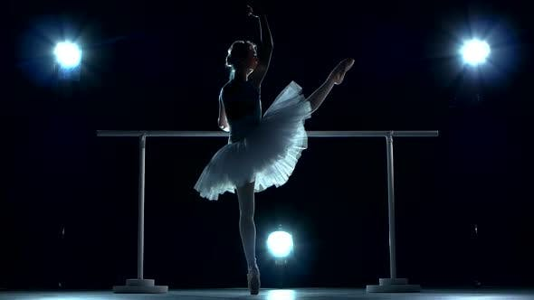 Beautiful Female Ballet Dancer on a Blue, Ballerina Is Wearing Tutu