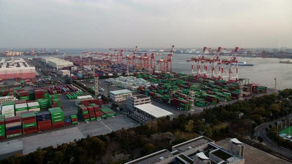Tokyo Container Terminal Facility Dockland Area