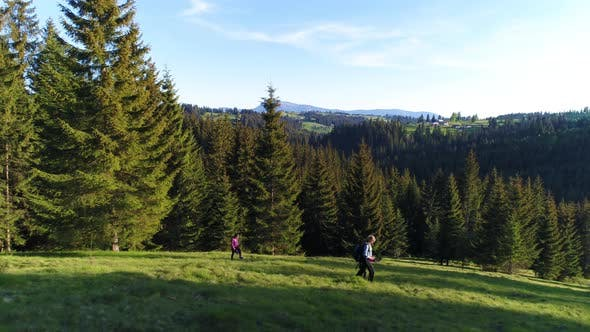 Thumbnail for Aerial Shot, Family Walking Along, Spring Day in Forest
