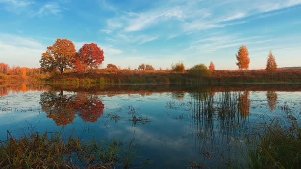 Thumbnail for Amazing Autumn Forest and Lake, Professional Time Lapse.
