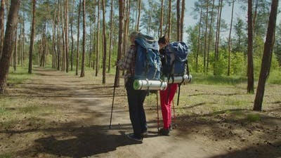Hiker Couple Backpackers with Hiking Poles Travelling in Forest Path