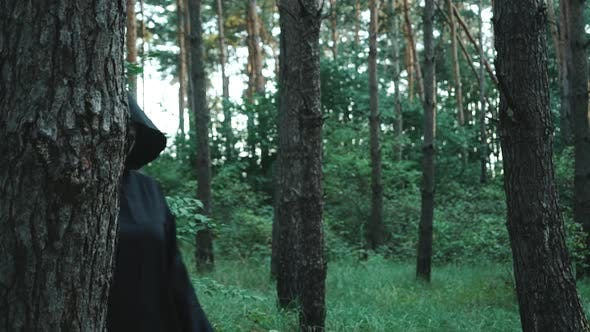 Evil Ghost Hiding in the Woods Near a Large Tree