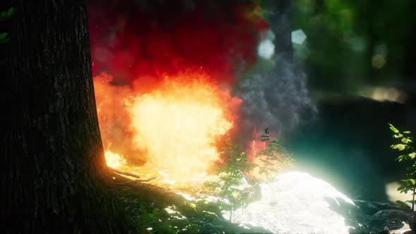 Thumbnail for Wind Blowing on a Flaming Trees During a Forest Fire