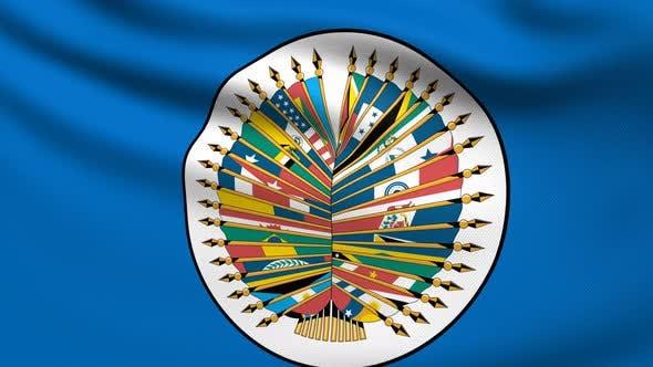 Organization Of American States Flag 4K