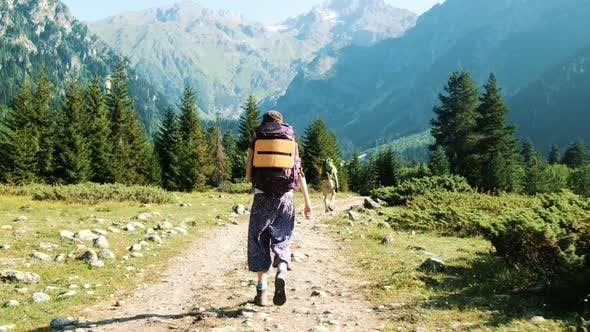 Thumbnail for Tourists with Backpacks Walk Trekking in a Hike Against the Backdrop of a Beautiful Mountain
