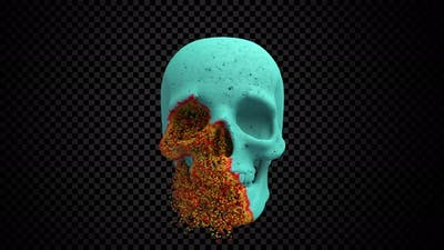 Skull Decay Overlay