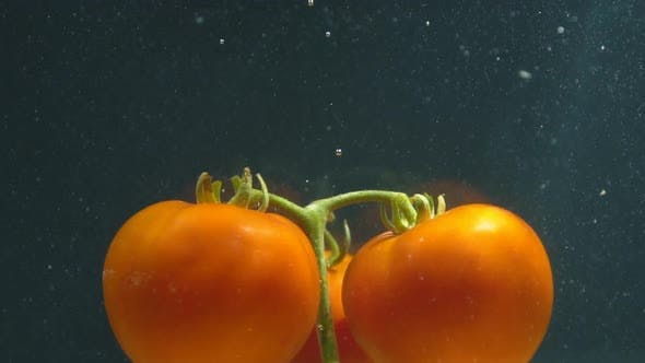 Thumbnail for Tomatoes Under Water