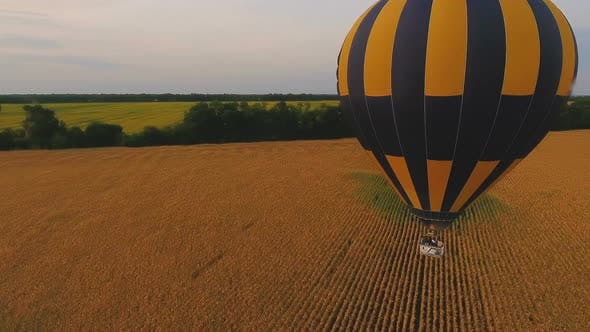 Thumbnail for Air Balloons Flying Over Fields Separated by Tree-Lines, Ballooning Championship