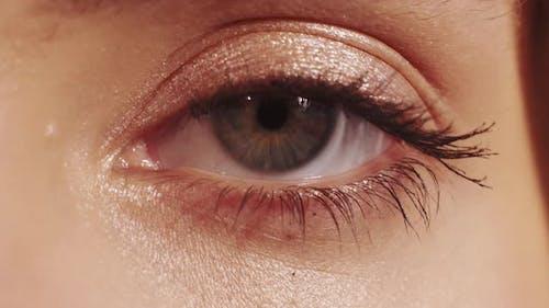 Soul Reflection Future Vision Female Eye Gray Iris