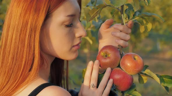 Young Woman in Apple Orchard
