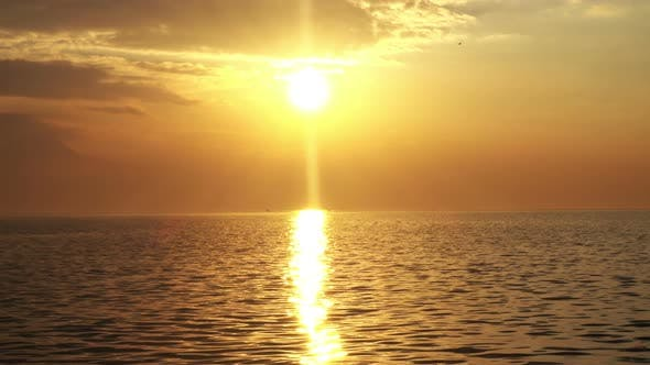 Thumbnail for Golden Calm