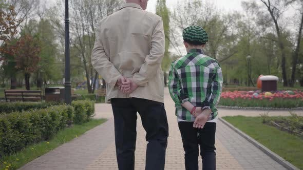 Cover Image for Portrait Grandfather and Grandson Walking in the Park with Their Backs To Camera