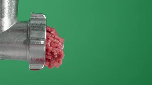 Pieces of Raw Minced Meat Fall From the Meat Grinder.