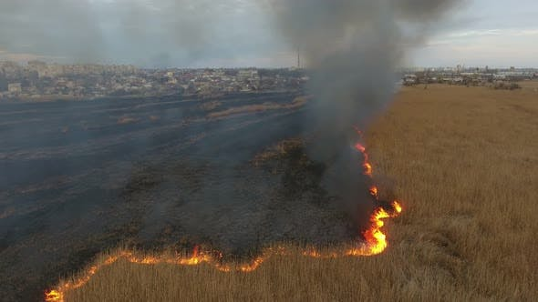 Cover Image for Aerial Shot of Grey Smoke Coils Rising From Burning Dnipro Basin Wetland